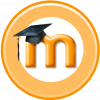 Picture of Moodle Admin
